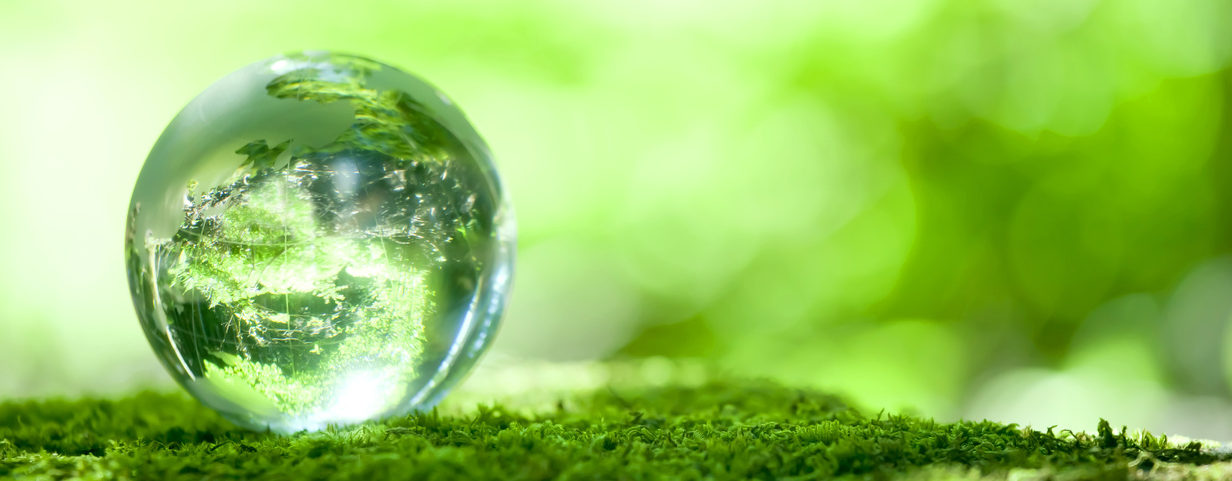 Картинки по запросу зеленая планета детское экологическое движение